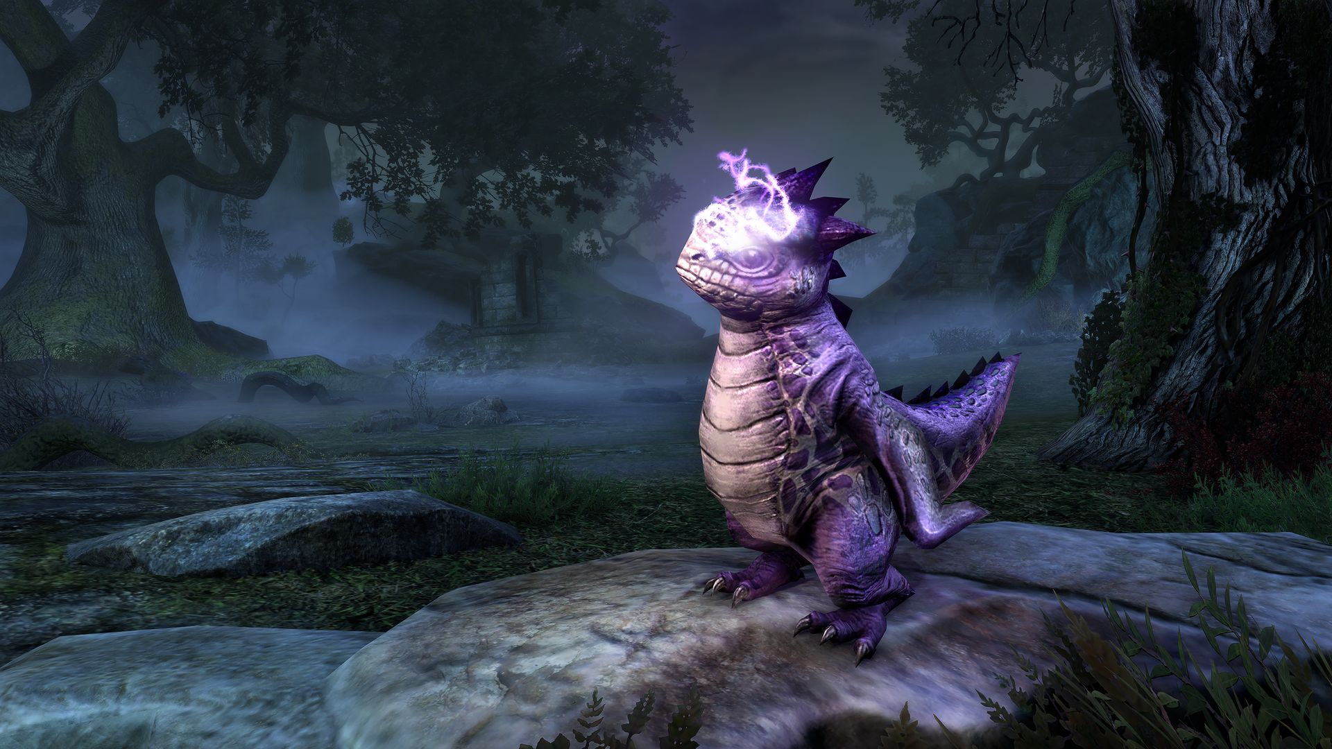 eso stream team, rare pet, purple bantam